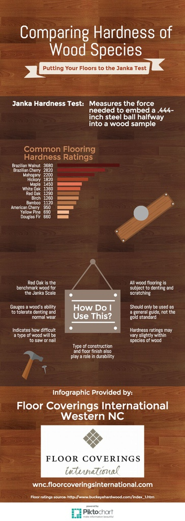 Comparing Hardness of Wood Species